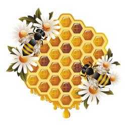 """被猴子耍?泰国进口蜂蜜被检出""""掺糖"""""""