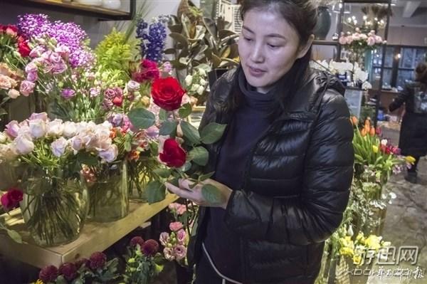 情人劫~进口玫瑰或飙升3000一束!进口花卉市场很热闹