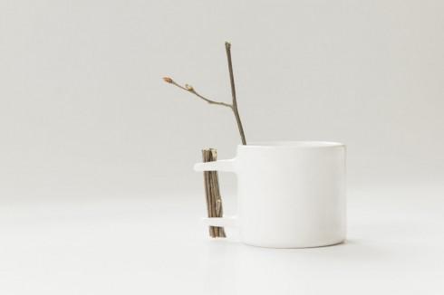 又是一年春来到 我家的咖啡杯发芽了